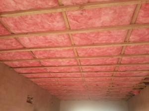 think pink insulation